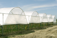 Greenhouse Poly Tunnel